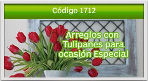 tulipanes a mixco