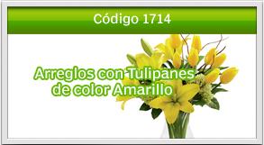 tulipanes a zona 12