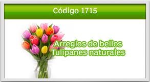 tulipanes a zona 16