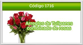 tulipanes a zona 2