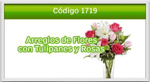 envio de tulipanes a eskala roosvelt
