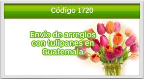 envio de tulipanes a fraijanes
