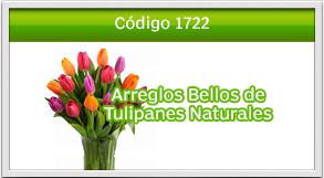 envio de tulipanes a majadas