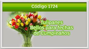 envio de tulipanes a naranjo mall
