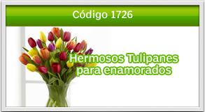 envio de tulipanes a peri roosvelt