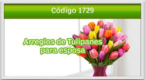 envio de tulipanes a proceres