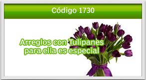 envio de tulipanes a sankris mall