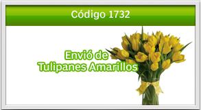 envio de tulipanes a zona 12