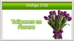 envio de tulipanes century plaza