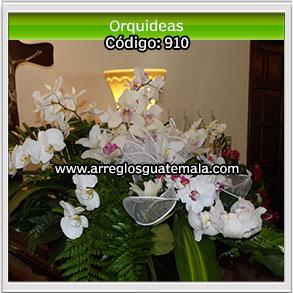 enviar orquideas a funerales