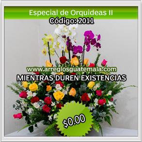 flores para 14 de febrero opcion 2211