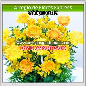 flores express a domicilio