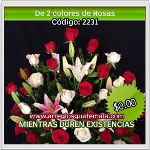 rosas de colores para dia de la madre