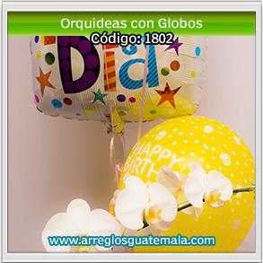 orquideas en guatemala con globos