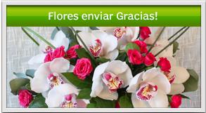 envio de flores a domicilio en guatemala de agraecimiento por la realización de un favor