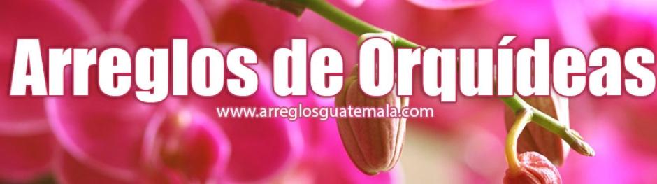 Orquideas en Guatemala